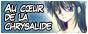 Le blog de Mizuho Kusanagi en français